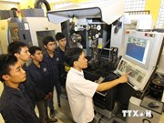 Denmark-backed dual vocational training proves effective