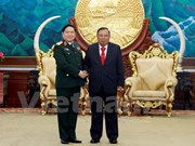 Vietnam treasures ties with Laos: Defence Minister