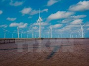 More firms register investment in renewable energy in Bac Lieu