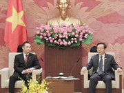 Delegation of Japan's Liberal Democratic Party welcomed in Hanoi