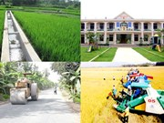 Project to develop Nghe An border communes
