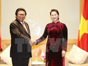 Vietnam, Indonesia should raise trade to 10 billion USD: NA Chairwoman