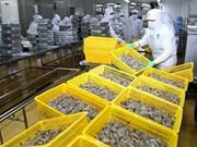 Vietnam's shrimp industry to become key economic sector