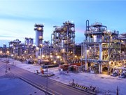 Thai firm keen on 100 percent stake at LSP