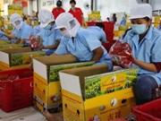 Post harvest losses hinder Vietnam's exports