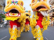 Can Tho: fourth national lion dragon dance champs opens
