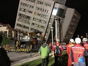 No Vietnamese victims reported in Taiwan earthquake