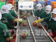 An Giang: Exports of agricultural products, clothing hike in January