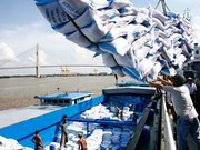Positive signs promise good year for rice export