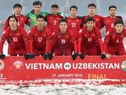 Nine regional football coach training classes to be held in Vietnam