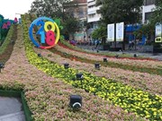 Nguyen Hue Flower Street opens for Tet
