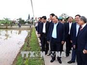 Prime Minister visits farmers in Nam Dinh