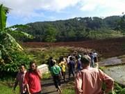 Indonesia: 11 missing in Central Java landslide