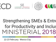 Vietnam attends OECD ministerial conference on SMEs in Mexico
