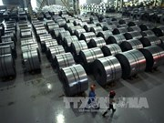 Vietnam wants exclusion from US's steel tariff