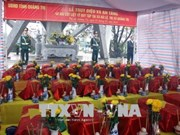 Quang Tri: 12 sets of war martyrs' remains collected