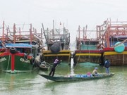 Quang Binh moves to prevent illegal, unreported fishing