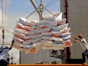 Indonesia strives to stabilise domestic rice prices