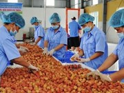 Cultivation law promotes farm produce's competitiveness