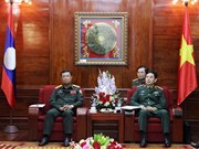 VN, Lao armies reinforce coordination to promote special solidarity