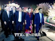 Vietnam-Japan culture exchange opened in Hai Phong
