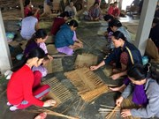 Young graduates to work in cooperatives in pilot programme