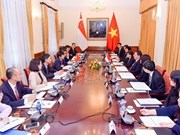 Vietnam, Singapore convene 11th political consultation