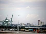 Vietnamese firm granted operation licence at Cuba's special economic zone