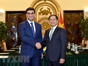 Vietnamese, Turkmen foreign ministries hold political consultation