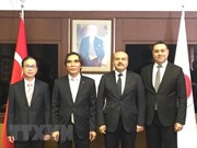 Vietnam, Turkey urged to expand economic cooperation