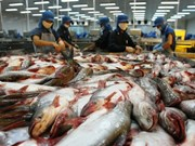 Measures sought for fisheries sector's sustainable development
