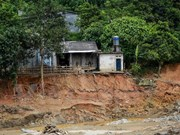 Tuyen Quang to relocate 95 households in landslide-prone areas