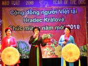 Poll: More Czechs fond of Vietnamese community