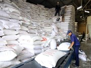 Philippines to import 250,000 tonnes of rice from Vietnam or Thailand