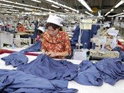 Textile-garment export target of over 34 bln USD achievable: VITAS