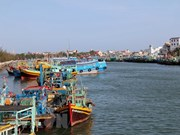 Ca Mau: boats violating foreign waters to be banned from operating