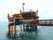 PetroVietnam to continue with large-scale divestment