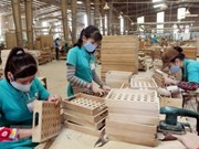 Vietnam accounts for 6 pct of world's timber, wooden furniture market