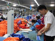 VN firms team up with Asia-Pacific partners for stronger growth