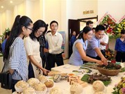 Ben Tre hosts Mekong startup festival for young people