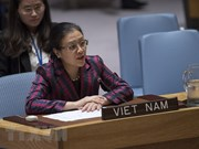 VN calls on UN Security Council to solve Israel-Palestine conflict