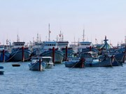 Phu Yen fishermen urged to maintain fishing activities