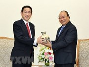 PM: Vietnam treasures strategic partnership with Japan