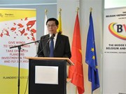 Belgian businesses seek cooperation opportunities in Vietnam
