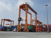 Nam Dinh Vu deep-water port put into use in Hai Phong