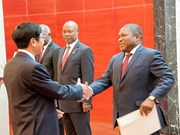 Mozambique welcomes Vietnam's investment: President Filipe Nyusi
