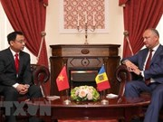 Ambassador wishes for growing Vietnam – Moldova ties