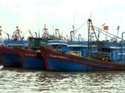Vietnam, China negotiate cooperation in less sensitive marine areas