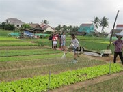Positive policy making needed for agri-tourism booming