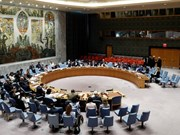VN nominated Asia-Pacific's only candidate for non-permanent UNSC seat